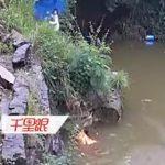 【動画】3人少女の内1人が湖に落下、少女2人で助け出そうとするが恐ろしい事に…