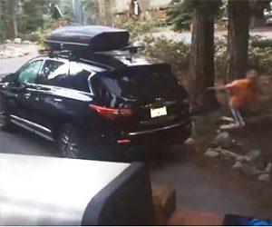 【動画】男性が車のドアを開けたら巨大なクマが出てきて男性は必死に逃げる衝撃映像