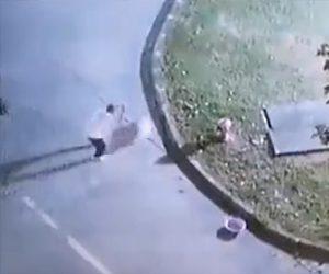【閲覧注意動画】男が消火栓につないだ犬を棒で殴りまくる衝撃映像