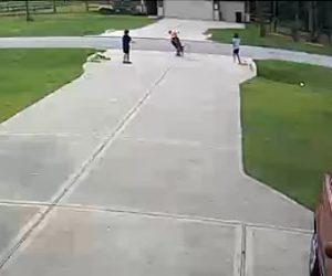 【動画】6歳の少年がピットブルに襲われ19歳男性が助けに行くが…