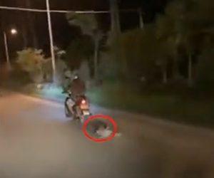 【動画】リードで繋がれた子犬を猛スピードのバイクが引きずって走る衝撃映像