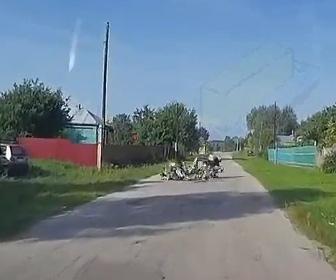 【動画】猛スピードのバイクが道の真ん中にいるガチョウ達に突っ込んでしまう衝撃事故映像