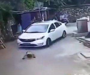 【動画】スケボーに腹ばいで乗る少年が車に気付かれず轢かれてしまう衝撃映像