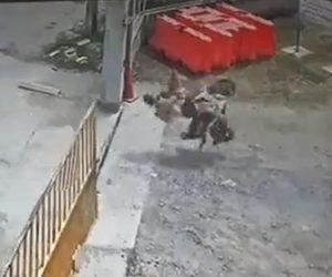 【動画】母と娘が乗るバイクがワイヤーの存在に気付かず猛スピードで突っ込んでしまい…