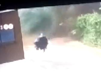 【動画】大規模な地すべりから母と息子が必死に逃げるが…