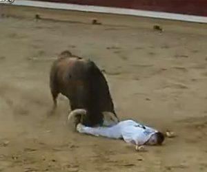 【動画】マタドールがアクロバットな動きで暴れ牛を飛び越えようとするが…