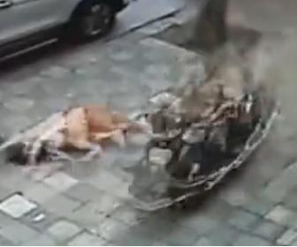 【動画】猛スピードのスクーターで後ろから妻に突っ込み、倒れた妻に鎌で襲いかかる夫