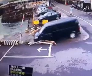 【動画】コントロールを失ったバンが川に突っ込んでしまう衝撃映像