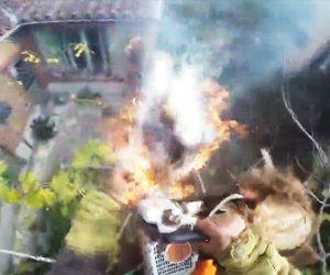 【動画】男性がヤシの木に登り木と切るがチェーンソーの摩擦で火が付いてしまい…