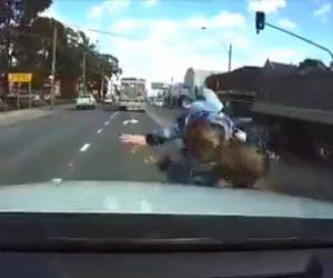 【動画】左右を確認せず道を渡る女性。猛スピードの車にはね飛ばされてしまう衝撃事故映像