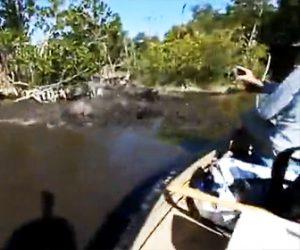 【動画】湿地帯をカヌーで進むと突然水面が激しく動き出す衝撃映像