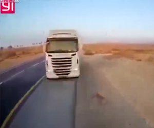 【動画】反対車線に飛び出してきたトラックを避ける事ができず2台のトラックが正面衝突