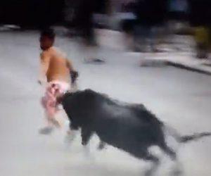 【動画】パンツ一丁で暴れ牛を挑発し必死に逃げる男性。衝撃の結末