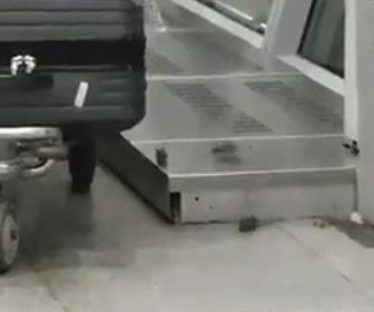 【動画】空港の待合室で大量のネズミが走り回る衝撃映像