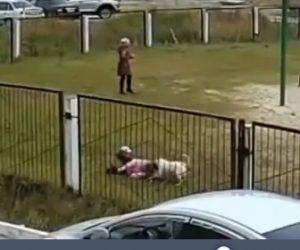 【動画】学校の校庭に犬が侵入。必死に逃げる子供達に犬が襲いかかる衝撃映像