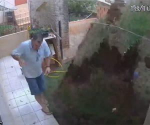 【動画】庭に出てくるモグラを退治しようと、マッチに火を着けてモグラの穴に投げると…