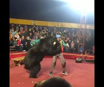 【動画】サーカスのショーでクマが調教師に襲いかかる衝撃映像