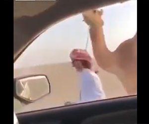 【動画】ラクダ使いが車に乗ってラクダを引こうとするが…