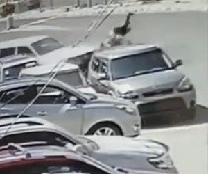 【動画】猛スピードの2人乗りバイクが車と正面衝突し後続の車にライダーが轢かれてしまう