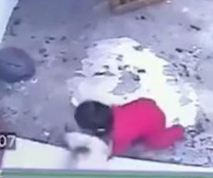 【動画】赤ちゃんが階段から落ちそうになるがネコが飛びかかり必死に助ける衝撃映像