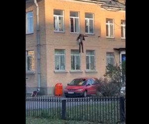 【動画】ラジエーター(暖房器具)に手錠をかけられた男が2階の窓から飛び降りる衝撃映像