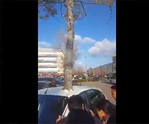 【動画】駐車している車から木が生えている不思議な映像
