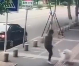 【動画】飼い犬に自分からぶつかり、医療費を要求する詐欺師がヤバい!