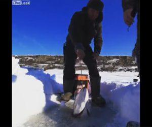 【動画】氷に穴を開け釣りをする男性が巨大魚が釣り上げる衝撃映像