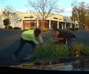 【動画】ピットブルが男性の手に噛み付き飼い主が放そうとするが…