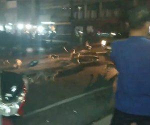 【動画】花火に驚いたサルの群れが一斉に走って逃げる衝撃映像