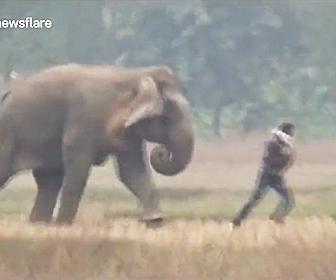 【動画】酔っ払い男が野生のゾウに近づき写真を撮ろうとするがゾウが怒り猛突進してくる衝撃映像