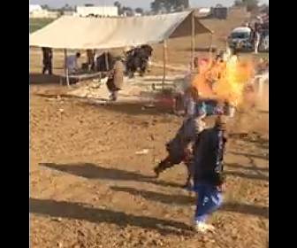 【動画】繋がれた2頭の牛がセレモニーで大暴れてししまう衝撃映像