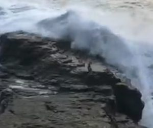 【動画】岸壁に立つ男性が大波にさらわれてしまう衝撃映像