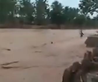 【動画】大雨で増水した川に飛び込んで遊ぶ子供達がヤバすぎる衝撃映像