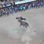 【動画】闘牛で男性が暴れ牛に襲われ角で突きまくられる衝撃映像