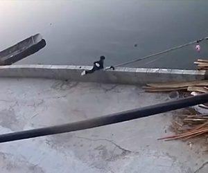 【動画】小さな男の子が川に石を投げるが誤って壁を越え落下してしまい…