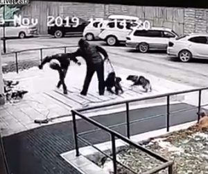【動画】隣人同士の争い。女性が散歩する犬に攻撃する男がヤバすぎる