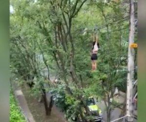 【動画】ドラッグ中毒女性の行動がヤバい!警察官から逃げようと電線にぶら下り…