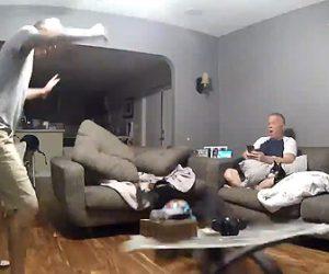 【動画】大型犬がソファーを飛び越えようとするが引っかかり、ガラステーブルに突っ込む衝撃映像