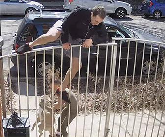 【動画】若い女性が散歩しているピットブルが暴走。ランニング中の男性に襲いかかってしまう衝撃映像