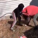 【動画】14歳少女のいじめがヤバい。いじめっ子が少女に激しい暴行をする衝撃映像