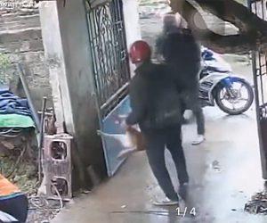 【動画】犬泥棒が2匹の犬を連れ去ってしまう犯行の一部始終
