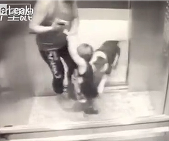 【動画】エレベーターに乗っている子供にブルドックが襲いかかって来る衝撃映像