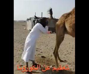 【動画】新型コロナウイルス対策でラクダの尿で顔を洗う男性