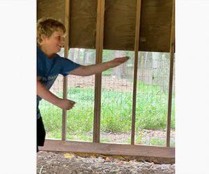 【動画】鶏小屋に侵入した巨大な蛇を少年が見事捕まえる衝撃映像