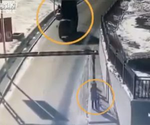 【動画】荷台を上げたままダンプカーが高さ制限バーに突っ込み、倒れたバーが…