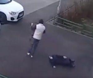 【動画】80歳のおばあさんに強盗が襲いかかる衝撃映像