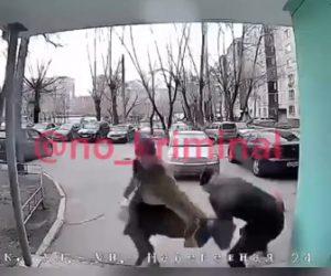 【動画】大学の入り口で強盗が後ろから女性に襲いかかり…