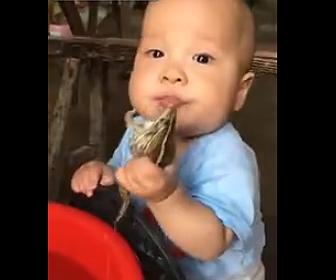 【動画】赤ちゃんが巨大なカエルを口にくわえ食べようとする衝撃映像