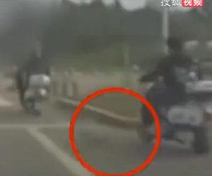 【事故】道を走るバイクに横から未確認生物が激突しバイクが転倒してしまう衝撃映像